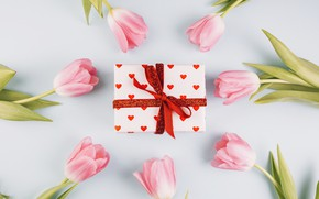 Picture background, holiday, Flowers, tulips, Gift