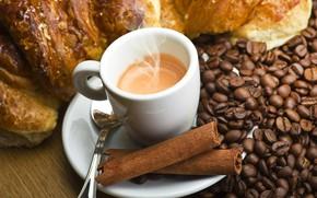 Picture coffee, grain, drink, cinnamon, bun