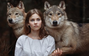 Wallpaper wolves, friends, girl, Svetlana Nicotine, the girl and the wolves