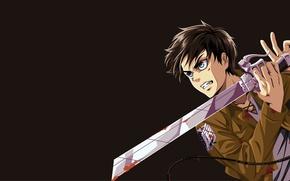 Picture sword, anime, survivor, ken, blade, giant, manga, Shingeki no Kyojin, Attack On Titan, Eren, japansese