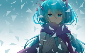 Picture girl, Vocaloid, tears
