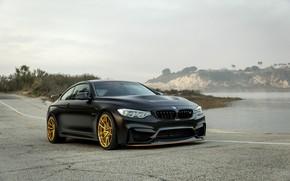Picture BMW, Black, GTS, F82