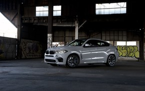 Picture BMW, X6M, White, Graphity, LED, F86