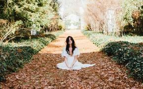 Wallpaper autumn, girl, dress, sitting