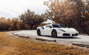 Picture white, sports car, Ferrari 488
