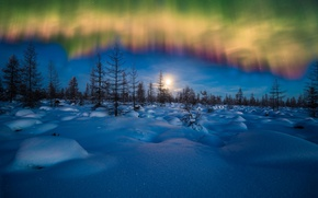 Wallpaper winter, the sky, snow, trees, Northern lights, the evening, the snow