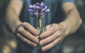 Wallpaper people, hands, flowers