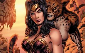 Picture Hair, Hero, Comic, Brunette, Wonder Woman, Superhero, Hero, Brunette, Villain, Cheetah, DC Comics, Diana, Diana, …