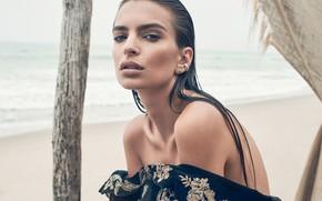 Picture model, brunette, Emily Ratajkowski