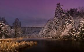 Wallpaper lake, night, nature