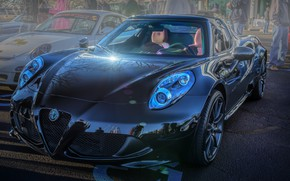 Picture Alfa Romeo, Spider