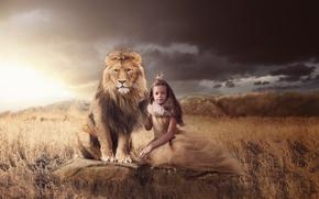 Picture grass, nature, stones, animal, predator, Leo, crown, girl, Princess, Queen