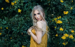 Picture greens, look, girl, flowers, pose, portrait, makeup, garden, dress, hairstyle, blonde, beautiful, the bushes, photoshoot, …