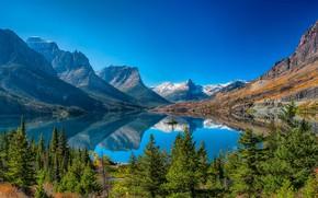 Picture trees, mountains, lake, reflection, Montana, Glacier National Park, Saint Mary Lake, Rocky mountains, Montana, Glacier …