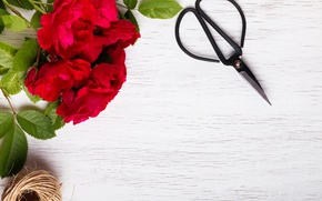 Picture red, wood, flowers, roses, red roses