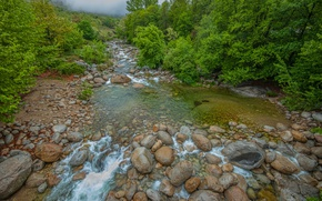 Picture Stream, Fog, Forest, Stones, Nature, River, River, Fog, Forest
