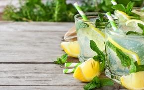 Picture mint, ice, lemonade, lemon