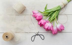 Picture flowers, tulips, thread, scissors