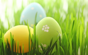 Picture grass, Easter, spring, Easter, eggs, Happy, pastel, the painted eggs