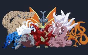 Picture game, Naruto, anime, manga, Naruto Shippuden, japonese, I was, tailed beasts