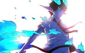 Picture anime, art, guy, Ao no Exorcist, Blue Exorcist