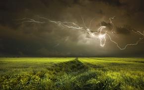 Wallpaper field, lightning, the sky, clouds