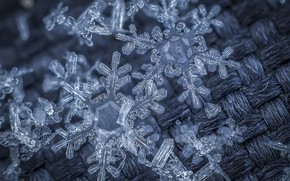 Picture cold, fabric, snowflake