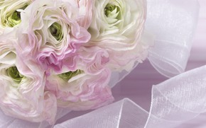 Picture Flowers, bouquet, tape, Asian Buttercup