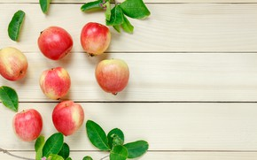 Picture leaves, branches, apples, fruit