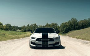 Wallpaper Mustang, Ford, Shelby, Front, Silver