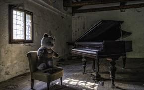 Wallpaper piano, chair, bear