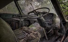 Picture the wheel, salon, needs repair