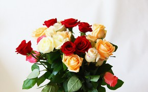 Wallpaper flowers, roses, bouquet