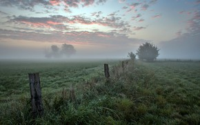 Picture field, autumn, fog, the fence