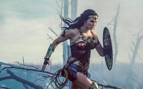 Picture cinema, Wonder Woman, armor, movie, brunette, film, warrior, DC Comics, Diana, Gal Gadot, gauntlet, WWII, …