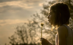 Picture mood, dandelion, girl