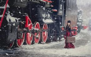 Picture winter, girl, style, the engine, suitcase, Anna Karenina, Anna Djibouti