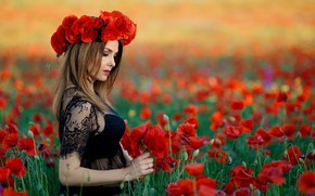 Picture flowers, summer, girl, Maki