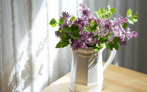Picture flowers, Lilac, vase