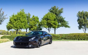Picture Ferrari, Black, Berlinetta, F12, Trees