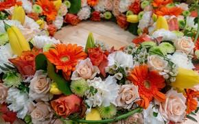 Picture Flowers, Roses, Gerbera, Chrysanthemum
