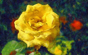 Picture leaves, rose, yellow