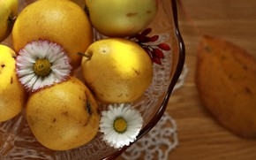 Picture summer, vase, fruit, pear, delicious