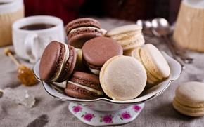 Picture coffee, cookies, Cup, cream, dessert, sweet, coffee cup, cookies, macaron, almond, macaroon