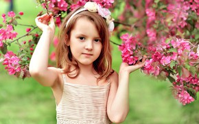 Picture flowers, tree, spring, girl