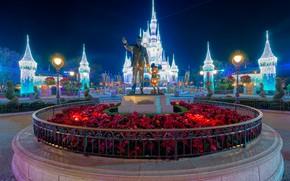 Picture Flowers, Night, Castle, Park, Sculpture, Disneyland, Night lights
