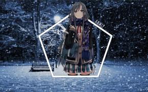 Picture winter, girl, light, snow, night, Park, anime, shop, snowfall, Chan, madskillz
