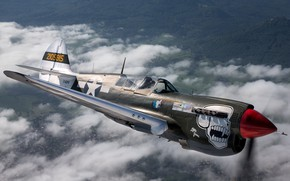 Picture fighter, times, The second world war, P-40N