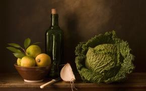 Picture bottle, still life, cabbage, lemons