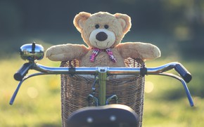Wallpaper summer, sunset, bike, basket, toy, bear, bear, summer, vintage, bear, bike, retro, teddy, lonely, cute, ...